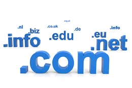 Setup a domain name for a new website or server.